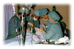 From 1986 to 1996, Malalai Hospital provided medical care to hundreds of thousands of refugee women and children in Quetta - Pakistan.