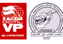 Address to our fighting sisters of RAWA in Afghanistan