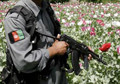 'Two-thirds of Afghan police take illegal drugs'