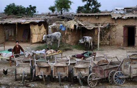 afghan_refugees_working_in_pakistan.jpg