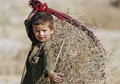 Child labor helps war-torn Afghan families survive