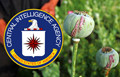 The CIA and Drugs