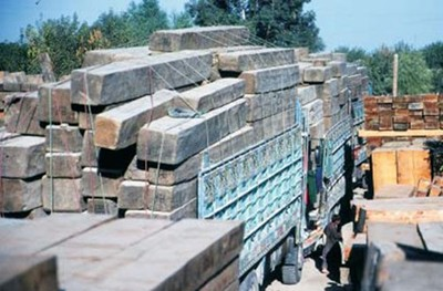 Timber smuggling from Afghanistan to Pakistan in full force