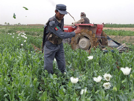 Police in Afghanistan allow drug smuggling