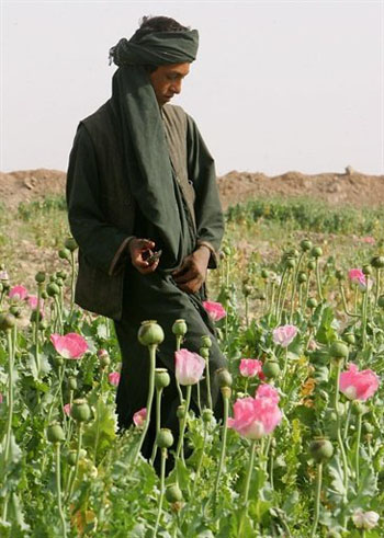 Afghanistan produces 92% of the world's opium