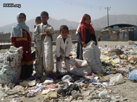 Afghan children collect rubbish in Kabul