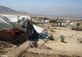 Afghans Can't Be Sure of Even One Meal a Day, Says Aid Group