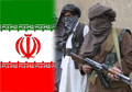 Iran helping the Taliban, US ambassador claims