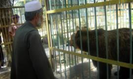 Kabul Zoo keeper