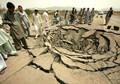 Afghan truck blast kills 25, including 13 children