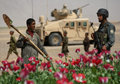 UN Report Misleading on Afghanistan's Drug Problem