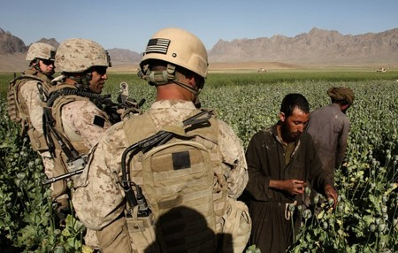 http://www.rawa.org/temp/runews/data/upimages/opium_field_helmand_troops.jpg