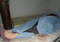 Taliban shoot and kill pregnant woman for condemning group