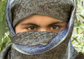 Afghan shelter plan stokes controversy