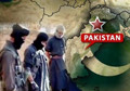"WikiLeaks cables: ""US aid will not stop Pakistan supporting militants"""