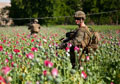 Is CIA Fueling New U.S. Drug Epidemic Using Cheap Heroin from Afghanistan?
