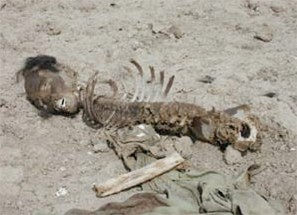 Mass grave near Mazar-e-Sharif