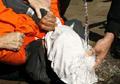 U.N.: Torture in Afghan prisons