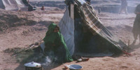 Afghan refugees eating grass, freezing temperature kills 18 children